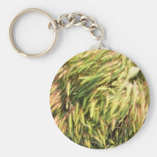 Top view on the dry grass of the lawn keychain