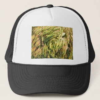 Top view on the dry grass of the lawn trucker hat