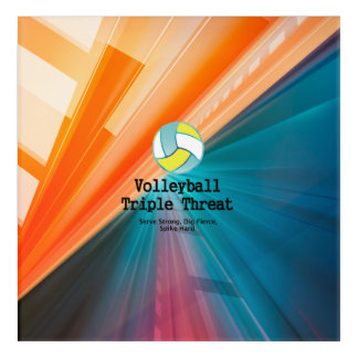 TOP Volleyball Triple Acrylic Wall Art