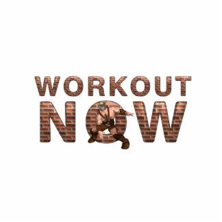 TOP Workout Now Cutout