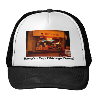 ¡TOPDAWG, Harry - Chicago superior Dawg! Gorras