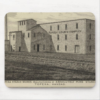 Topeka Starch Worksand Residence of DM Howard Mouse Pad