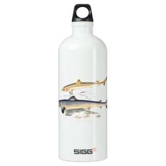 TOPER AND YOUNG SHARKS ALUMINUM WATER BOTTLE