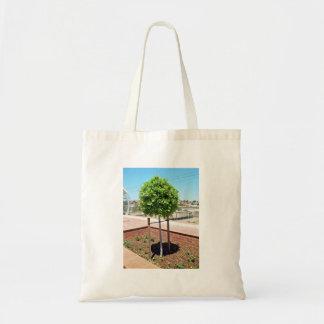 Topiary al aire libre en plantador del ladrillo bolsas de mano