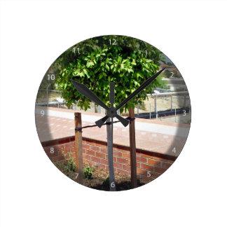 Topiary al aire libre en plantador del ladrillo reloj
