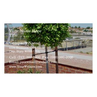 Topiary al aire libre en plantador del ladrillo plantilla de tarjeta de negocio