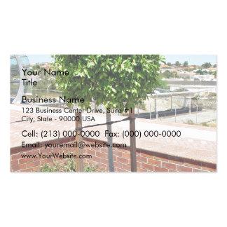 Topiary al aire libre en plantador del ladrillo tarjeta personal