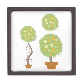 Topiary Caja De Joyas De Calidad