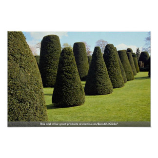Topiary, casa de Packwood, Warwickshire, Inglaterr Poster