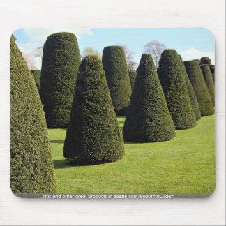Topiary, Packwood House, Warwickshire, England Mousepad