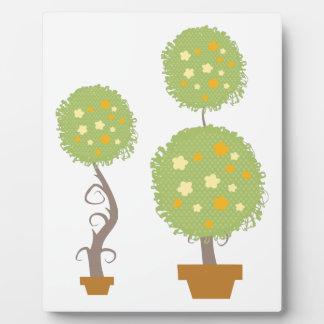 Topiary Placa