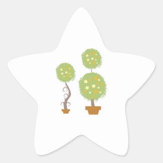 Topiary Star Sticker