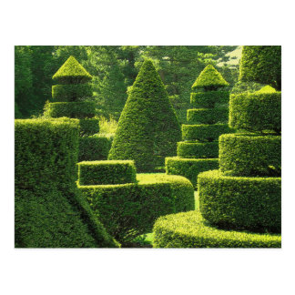Topiary verde - postal