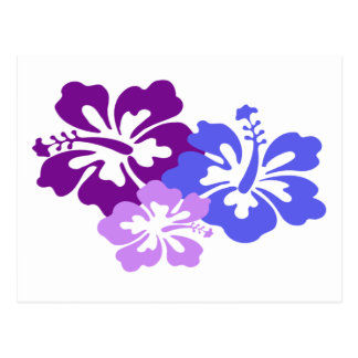 Topical Hibiscus Flower in Blue, Purple and Lilac Postcard