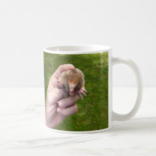 topo a disposición contra grass.jpg tazas de café