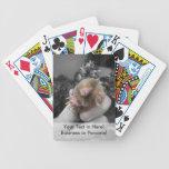 Topo vivo a disposición bw.jpg colorized sonriente barajas de cartas