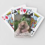 Topo vivo smiling.jpg disponible cartas de juego