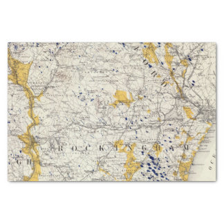 """Topographic and Glacial Map of New Hampshire 10"""" X 15"""" Tissue Paper"""