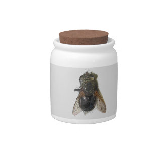 Topographic Horse Fly Candy Jar by KLM