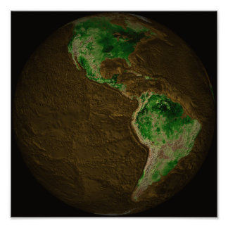 Topographic Map of Earth Poster