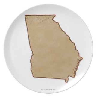 Topographic Map of Georgia Party Plate