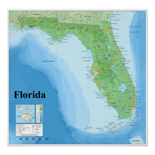 Topographic Map of the American State of Florida Poster | Zazzle.com