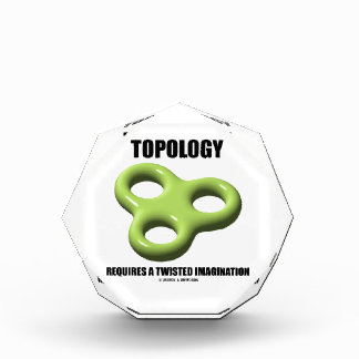 Topology Requires A Twisted Imagination Toroid Award