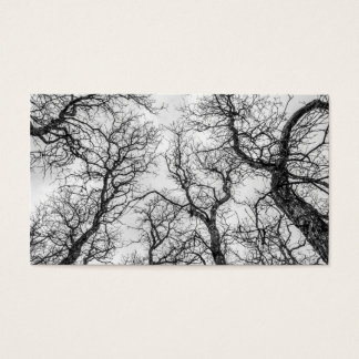 Tops of Crooked, Bare Trees Business Card
