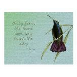 Toque el colibrí del cielo tarjeta postal
