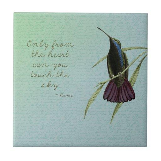 Toque el colibrí del cielo tejas