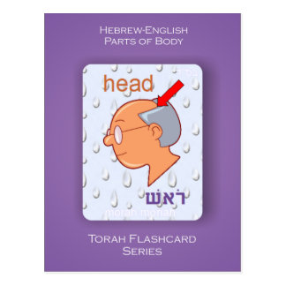Torah Flashcard Series - Parts of Body Postcard