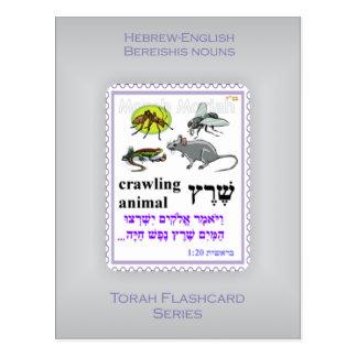 Torah Flashcards Series - Bereishis Nouns Postcard