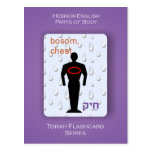 Torah Flashcards Series - Parts of Body Post Cards