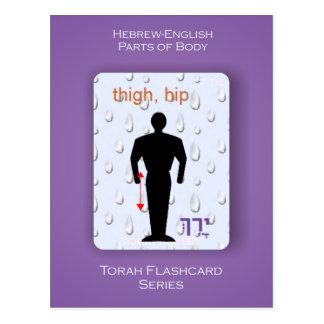 Torah Flashcards Series - Parts of Body Postcard