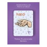 Torah Flashcards Series - Parts of Body Postcards