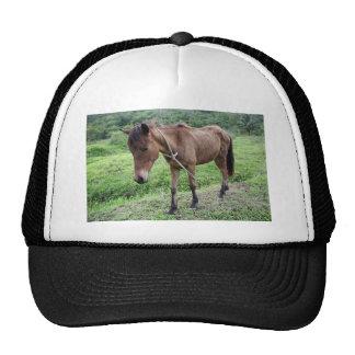 Toraille6 Mesh Hats