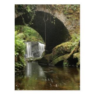 Torc Bridge Postcard
