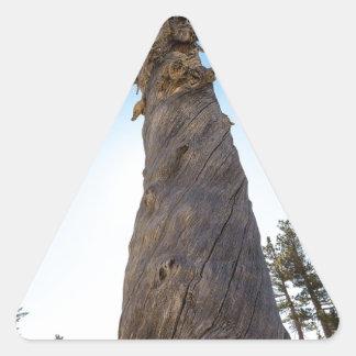 Torcer el árbol pegatina triangular