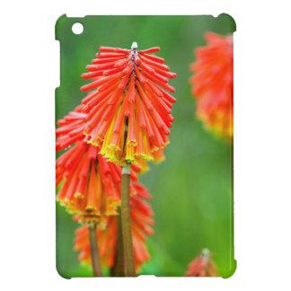 Torch Lily (Kniphofia Uvaria), Western Cape iPad Mini Cases