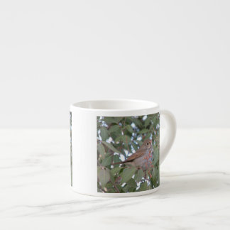 Tordo de ermitaño taza espresso