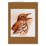 Tordo de madera - tarjeta de nota del pájaro