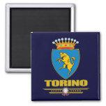 Torino (Turin) Magnets