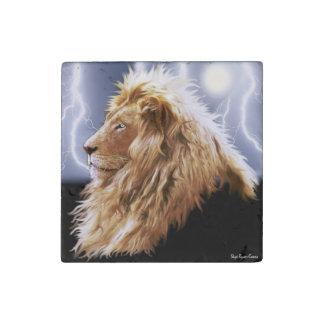 Tormenta africana masculina del león y del imán de piedra