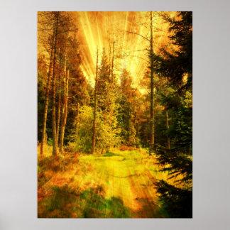 Tormenta de fuego de maderas del otoño poster