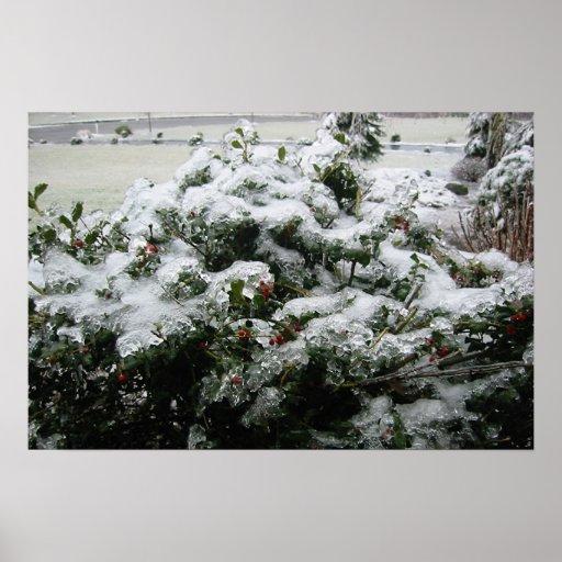 Tormenta de hielo del invierno Bush Posters