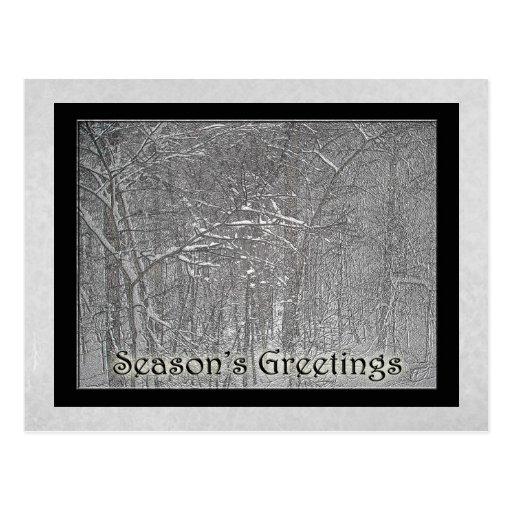 Tormenta de la nieve de febrero de los saludos de  postal
