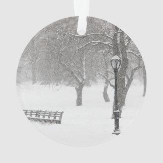 Tormenta de la nieve del Central Park