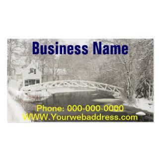 Tormenta de la nieve en Somesville Maine Plantilla De Tarjeta De Negocio