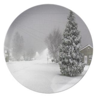 Tormenta de la nieve platos