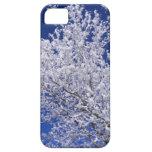 Tormenta de la primavera iPhone 5 carcasas